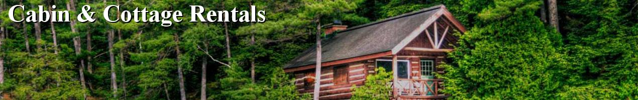 Northern michigan cabin cottage rentals a m for Northern michigan cabin rental
