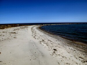 Sturgeon Point Beach 300 x 225